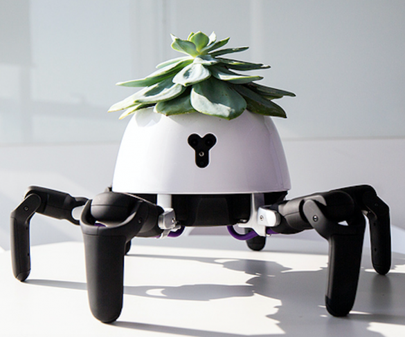 Robotic Plant Pot Follows The Sun